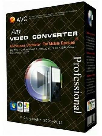 Any Video Converter Professional 3.5.9 Portable
